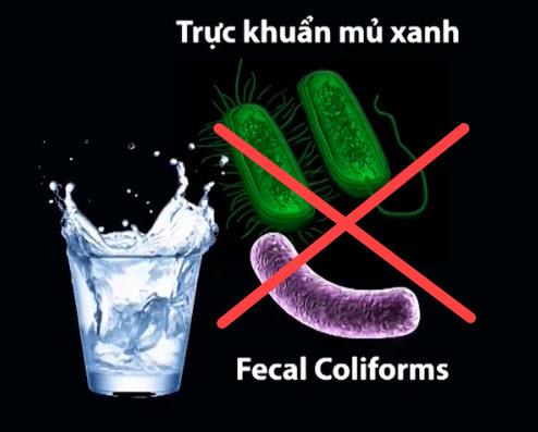 Máy lọc nước Famy loại bỏ hoàn toàn Vi khuẩn Fecal Coliforms và Vi khuẩn Ps. Aeruginossa